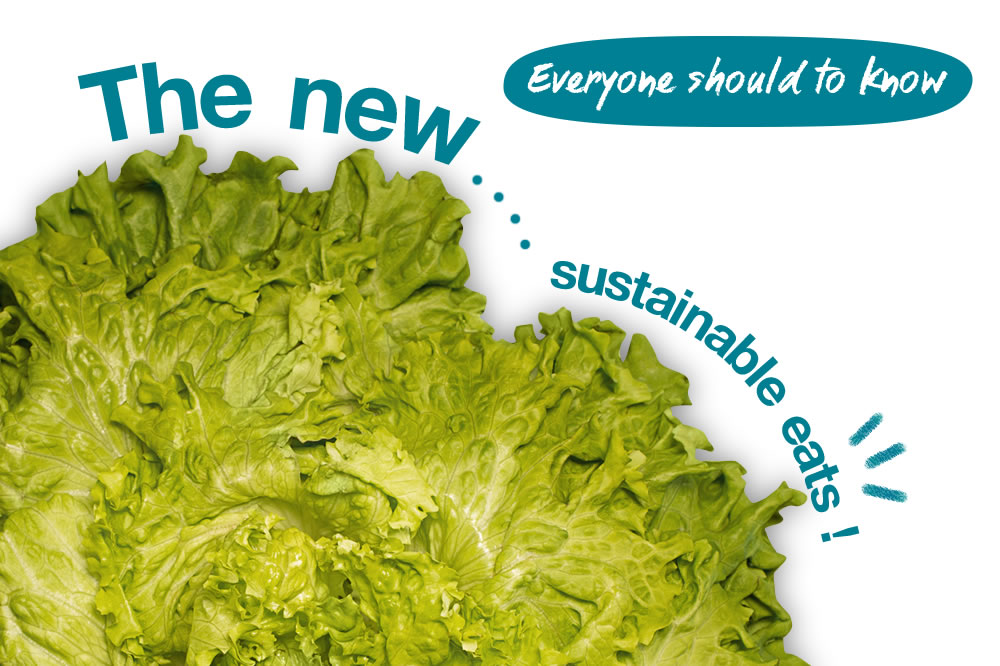 The new sustainable eats